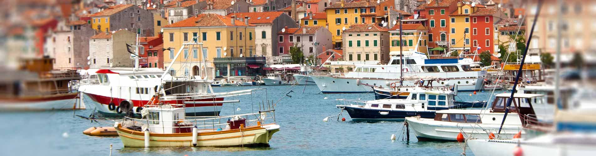 Rovinj and sea port.jpg